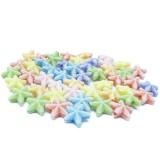 10g Mořská hvězdice – plastové korálky barevný mix